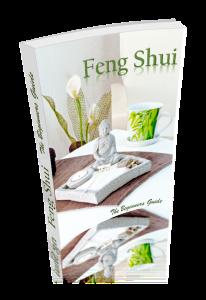 feng shui the beginners guide