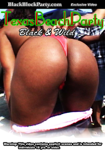 [SD] TEXAS BEACH PARTY - BLACK & WILD (Galveston TX) | Movies and Videos | Other