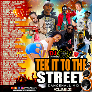 dj roy tek it to the street dancehall mix vol.22