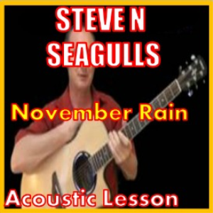 Learn to play November Rain By Steve N Seagulls | Movies and Videos | Educational