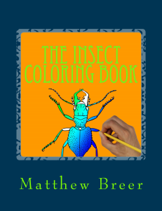 the insect coloring book pdf