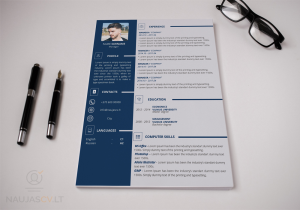 professional resume template + cover letter