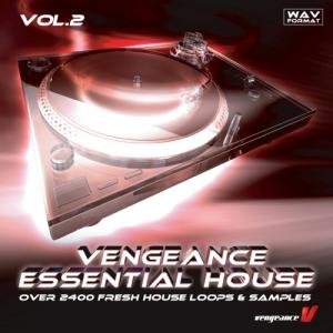 vengeance essential house vol.2