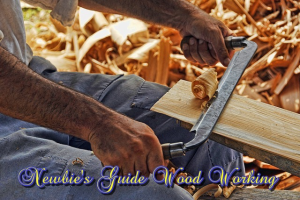 newbie's guide wood working how to make beautiful wooden items craft pdf ebook