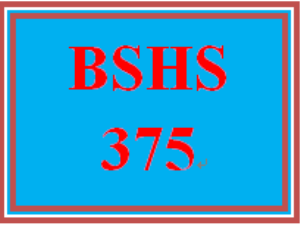 BSHS 375 Week 1 Using Information Technology in Human Services | eBooks | Education