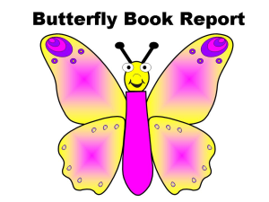 butterfly book report set - colorful & story elements