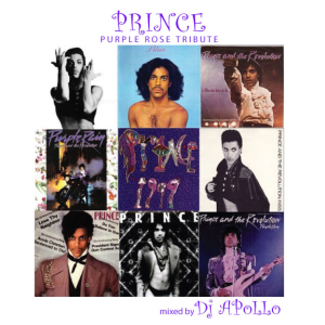 prince - purple rose tribute