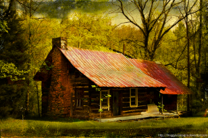 cabin in the woods (digital artwork)