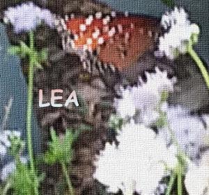 lea.mp3
