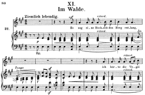 im walde, op.39 no.11, high voice in in a major, r. schumann (liederkreis), c.f. peters
