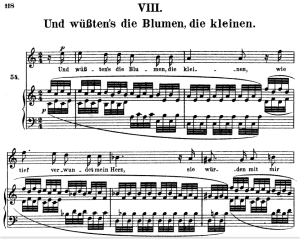 und wüssten's die blumen op.48 no.8, high voice in a minor, r. schuman (dichterliebe)n, c.f. peters