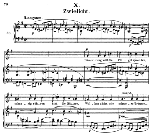 zwielicht op.39 no.10, high voice in e minor, r. schumann (liederkreis), c.f. peters