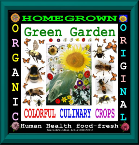 Homegrown Garden | Photos and Images | Digital Art