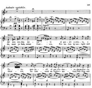 oh se una volta...ah non credea mirarti. recitative and aria for soprano (amina). v. bellini: la sonnambula, ed. schirmer  (1902), italian/english.