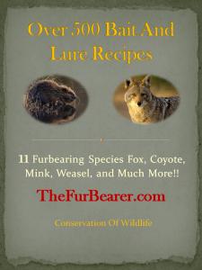 500 Trapping Recipes E-book PDF | eBooks | Sports