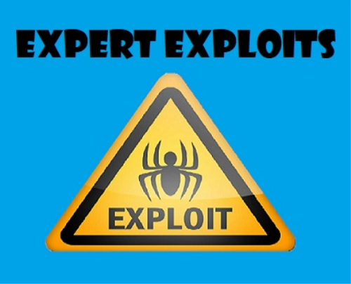 First Additional product image for - Expert Exploits - Part 1 - Fundamentals of Exploitation