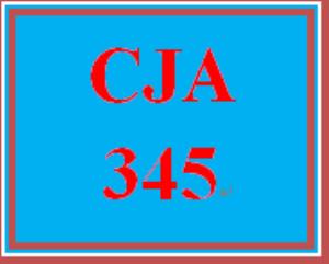 CJA 355 Week 2 Problem Evaluation Paper | eBooks | Education