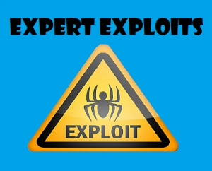 Expert Exploits - Part 2 - Tactical Aggression | Movies and Videos | Training