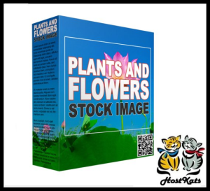 plants and flowers stock images