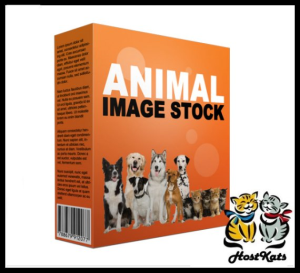 Animal Stock Images | Photos and Images | Business World
