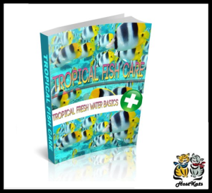 Tropical Fish Care | eBooks | Reference