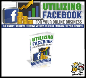utilizing facebook for your online business