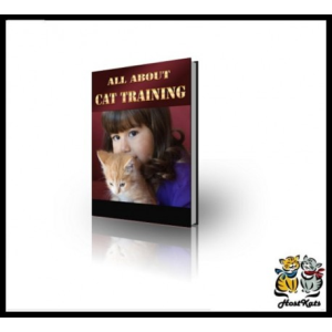All About Cat Training   eBooks   Reference
