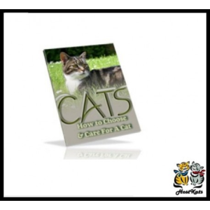 How To Choose & Care For A Cat | eBooks | Reference