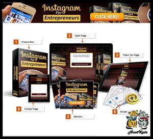 instagram for entrepreneurs ecourse