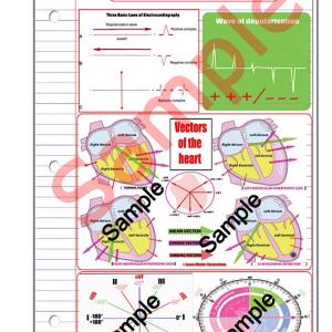 cardiac axis made easy (pdf) file
