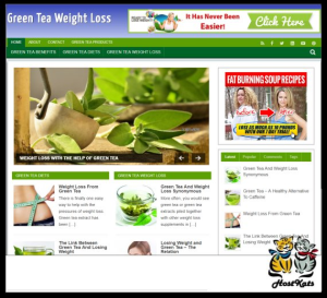 WordPress / Green Tea Blog - Includes Web Hosting on our Namecheap Server | Software | Design Templates