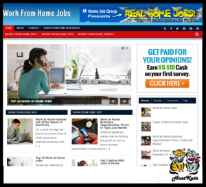 wordpress / work from home jobs -includes web hosting on our namecheap server