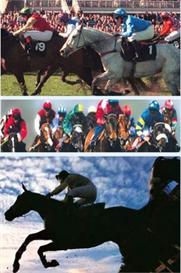 horse racing system u/w/e