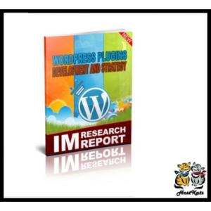 wordpress plugin strategy and development