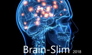 brain-slim 2018