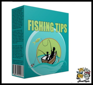 fishing tips plr niche blog