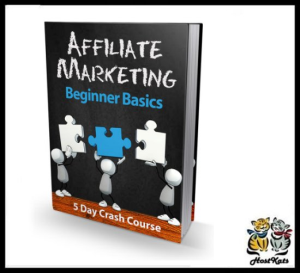 affiliate marketing beginner basics - ebook