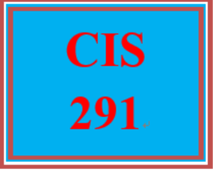 CIS 291 Week 4 Individual: IT Profile | eBooks | Computers