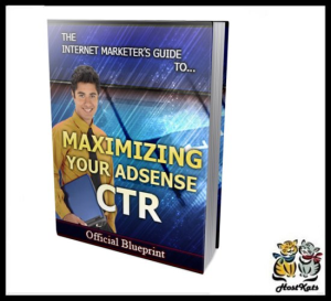 maximize your adsense ctr - ebook