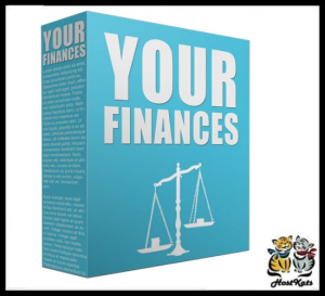 Your Finance PLR Content - 25 PLR ARTICLES | eBooks | Business and Money