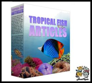 Tropical Fish PLR Content - 10 PLR ARTICLES | eBooks | Business and Money