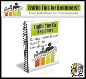 traffic tips for beginners - ebook