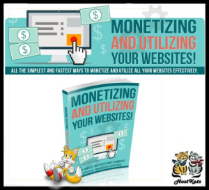 monetizing and utilizing your website - 2017