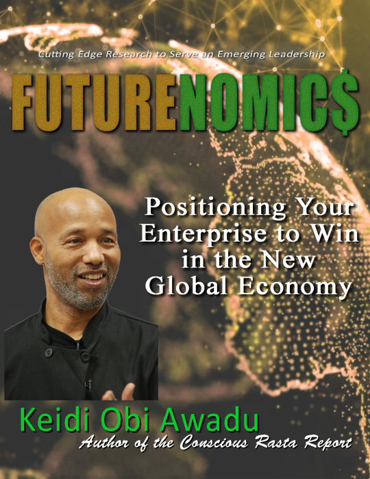First Additional product image for - FUTURENOMIC$: Positioning Your Enterprise to Win in the New Global Economy Ebook