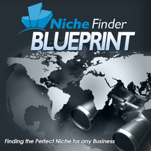 ultimate niche blueprint book and video series