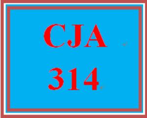 CJA 314 Week 4 Week 5 Learning Team Outline | eBooks | Computers