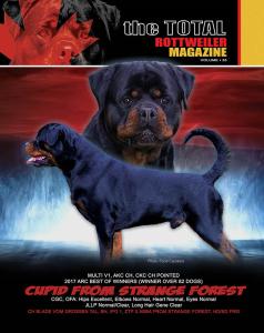 Volume 35 | eBooks | Pets