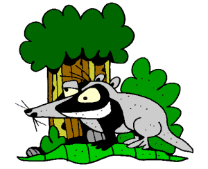 Colored Badger Illustration   Photos and Images   Animals