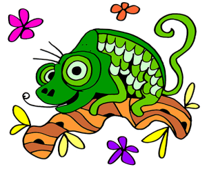 Colored Chameleon Illustration   Photos and Images   Animals