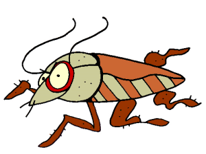 Colored Cockroach Illustration | Photos and Images | Animals